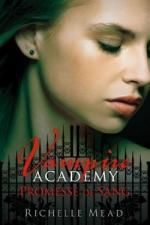 http://roza.cowblog.fr/images/bookcovervampireacademytome4promessedesang154348250400.jpg